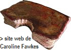a_livre_Fawkes_blanc